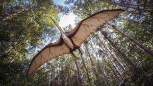 egy repülő dinoszaurusz